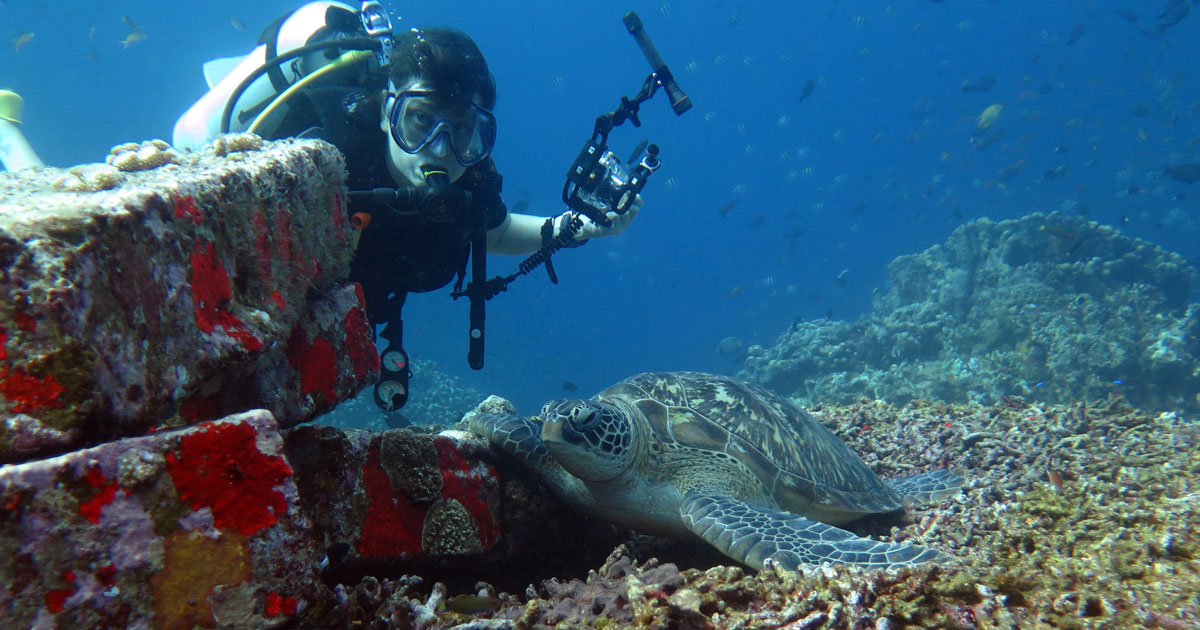 Indonesia's Gili Islands: tropical fun with turtles