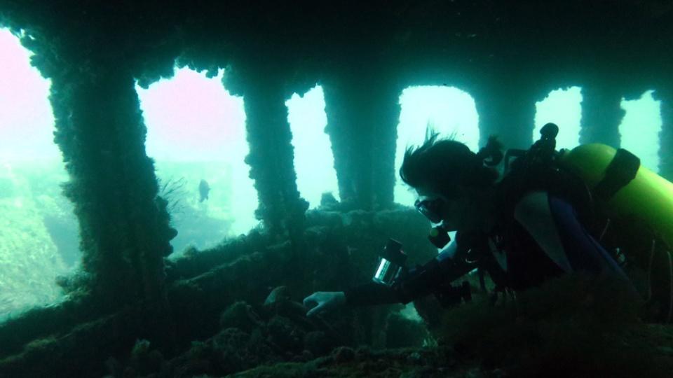 Wreck Diving Safety DAN AP Ex HMAS Adelaide at Terrigal NSW Australia Diveplanit