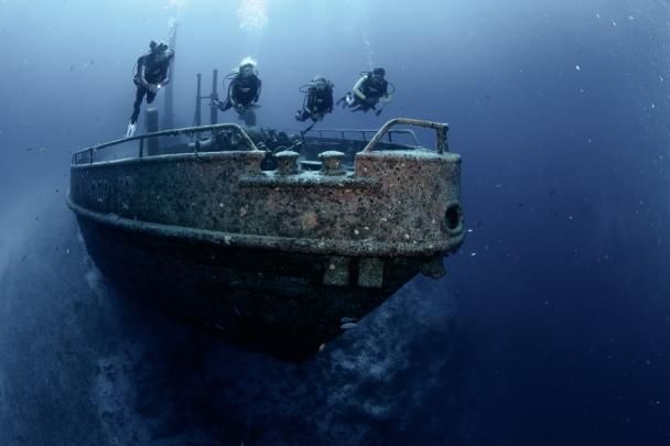 Stuart Cove's Dive Bahamas, New Providence Island, Bahamas.